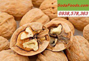 qua-oc-cho-walnuts-Hartley
