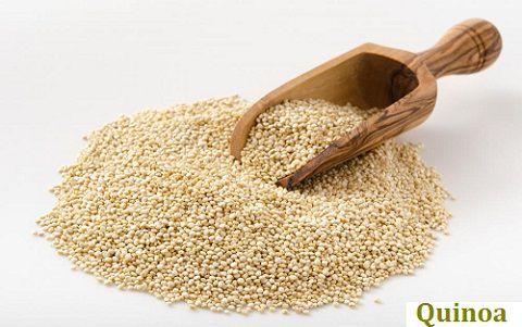 Giá trị dinh dưỡng của hạt quinoa | Tài liệu công bố bởi FAO/WHO/UN