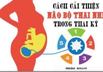 cai-thien-thong-minh-thai-nhi-1-1491812944-width500height313[3]