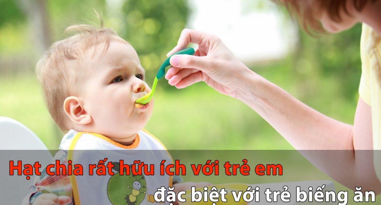 Cách sử dụng hạt chia cho bé đúng cách, mang lại hiệu quả