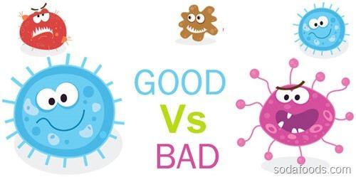 Cách dùng men vi sinh đúng chuẩn cho cả trẻ em và người lớn