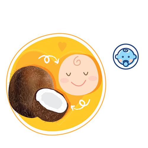 Sự phát triển của thai nhi tuần thứ 35